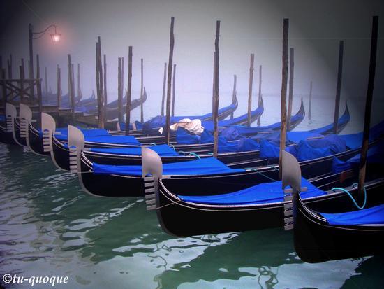 Venezia-il mondo in blu (4077 clic)