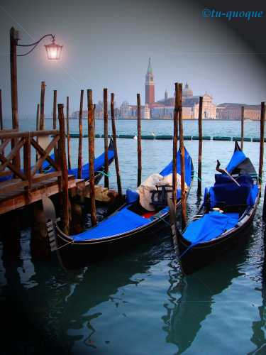 Venezia magica (2910 clic)