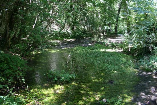 natura - SCANNO - inserita il 24-Aug-11
