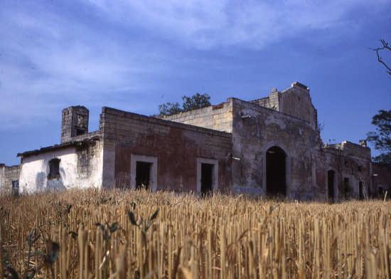 trinitapoli-masseria  labranca (1544 clic)