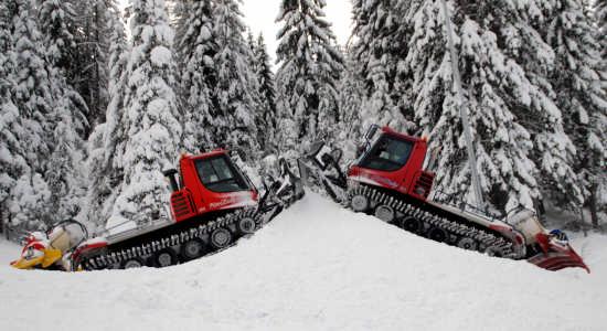 gemelli - Bolzano (2641 clic)