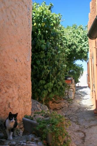 immagine9 - Posada (2869 clic)