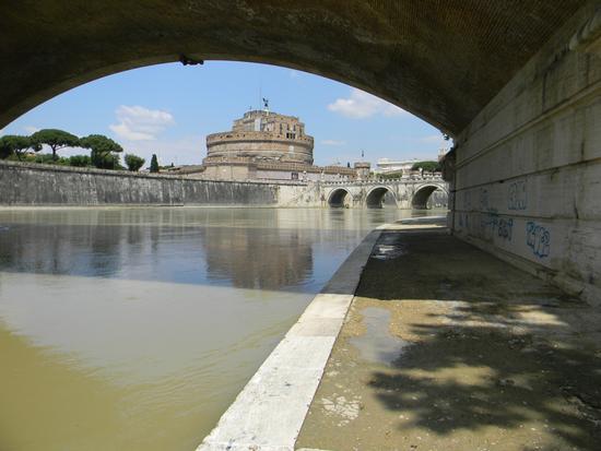 LungoTevere: uno sguardo sul castello.... - Roma (2685 clic)