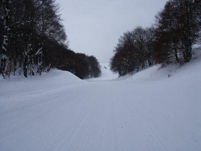 Rivisondoli - Monte Pratello  (4785 clic)