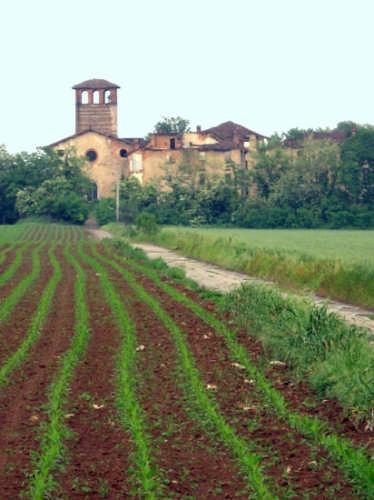 Cascina Camuzzago - Bellusco (3809 clic)