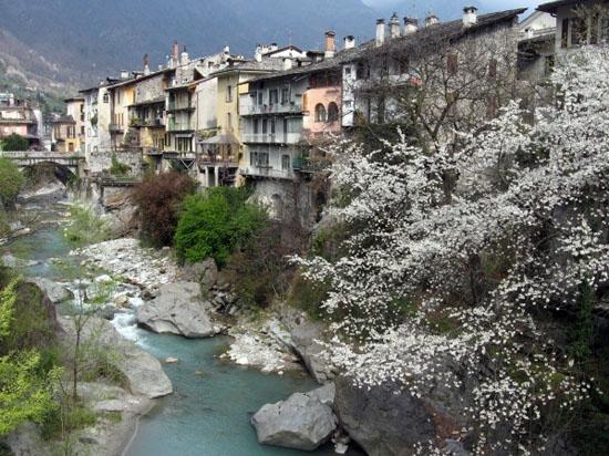 timida primavera - Chiavenna (5950 clic)