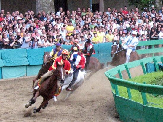 Il palio di Ferrara: la corsa dei cavalli (5346 clic)