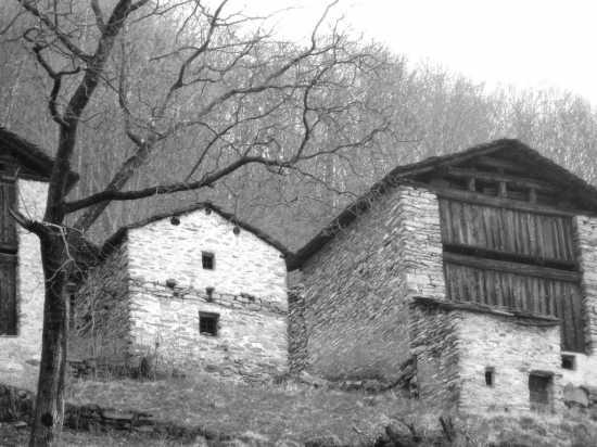 Vecchie costruzioni di Savogno (3913 clic)
