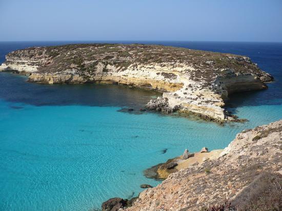 Isola dei conigli - Lampedusa (944 clic)