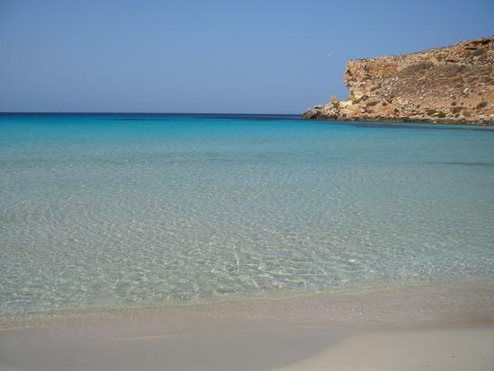 Spaiggia dei conigli - Lampedusa (622 clic)