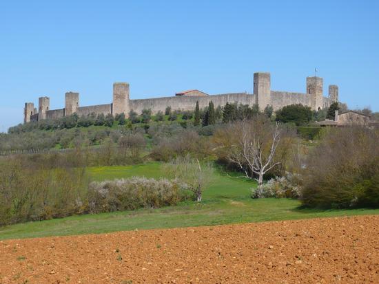 Panorama - Monteriggioni (1091 clic)