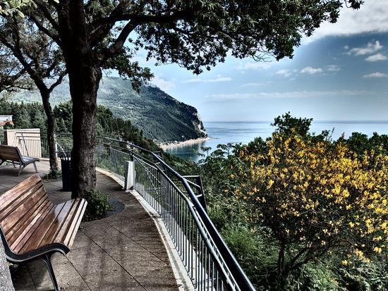 La terrazza dei miei sogni... - Sirolo (1365 clic)