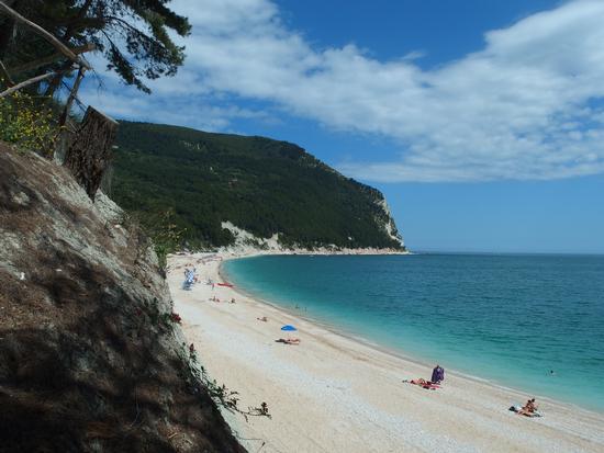 La spiaggia di San Michele... sempre splendida - Sirolo (1095 clic)