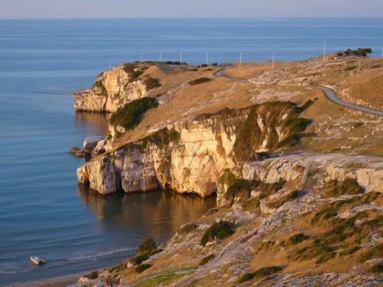 Punta Manaccora  - Spiaggia zaiania (1923 clic)