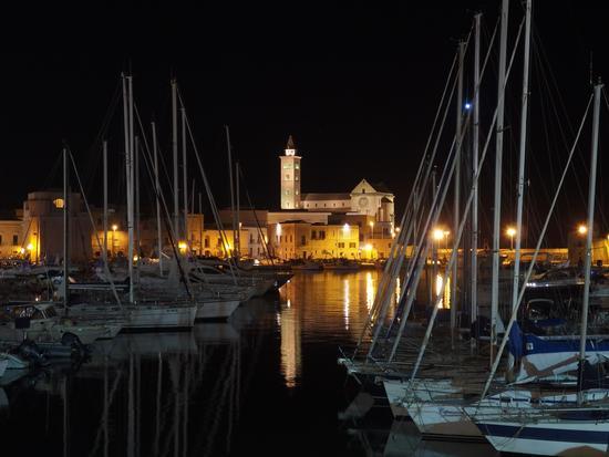 Magica veduta dal porto sulla cattedrale illuminata - Trani (578 clic)