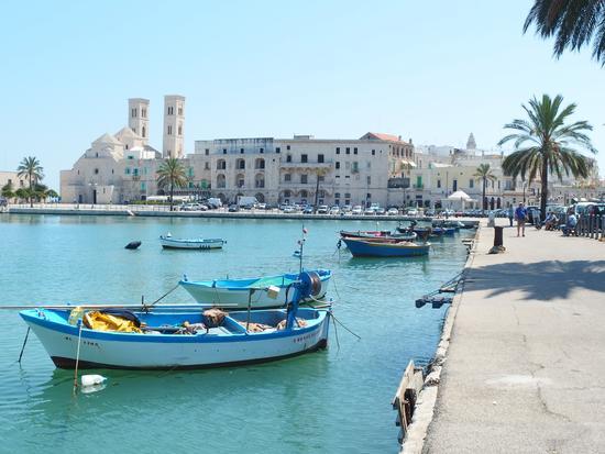 Veduta dal porto sulla spendida città vecchia - Molfetta (552 clic)