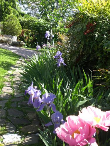 B&B Garden in Udine in Friuli * Italy (1402 clic)