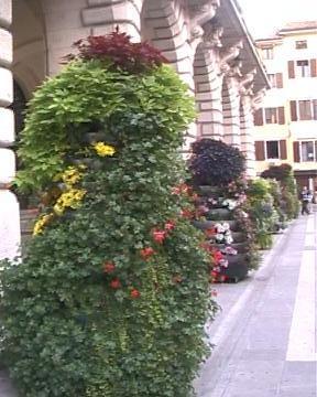 Elmagos B&B Udine:  Municipio di Udine decorato magnificamente. (4241 clic)