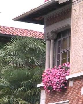 Udine: balcone fiorito... (2571 clic)