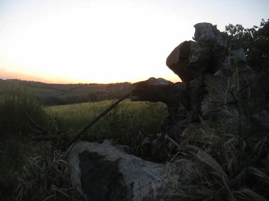 tramonto a Tavullia (2172 clic)