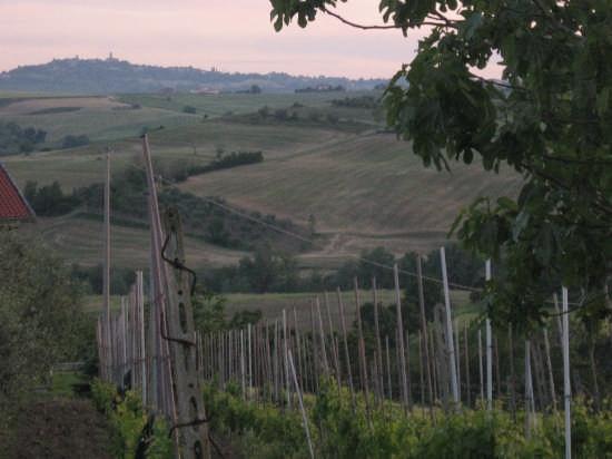tramonto a Tavullia (2844 clic)