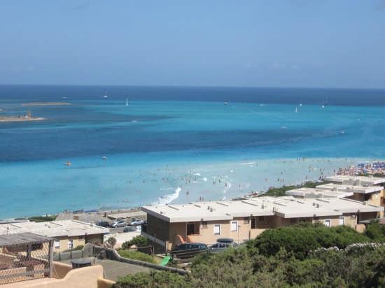 Spiaggia La Pelosa - Stintino (6367 clic)