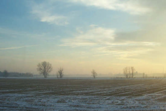 paesaggio pavese - Pavia (2480 clic)