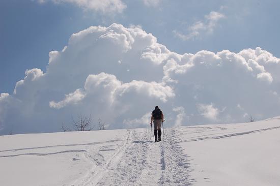 ESPLOSIONE ACQUEA - Alpe devero (1463 clic)