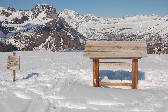SOTTO LA NEVE - Alpe devero (1560 clic)