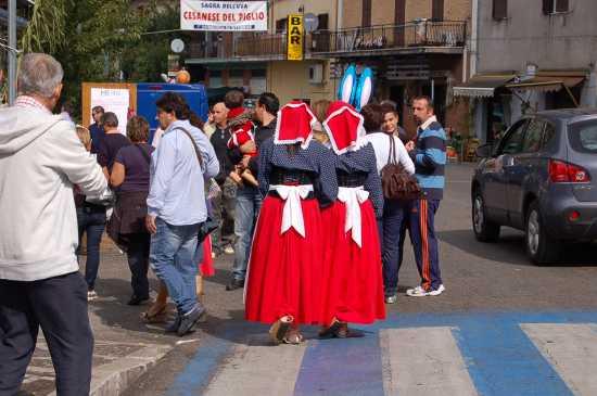 SAGRA DEL CESANESE - Piglio (2980 clic)