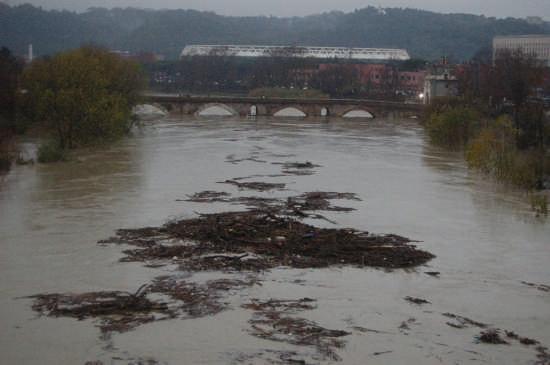 Piena del tevere a ponte Milvio 12.12.2008 - Roma (1921 clic)