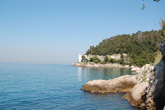 RISERVA DI MIRAMARE - Trieste (2914 clic)