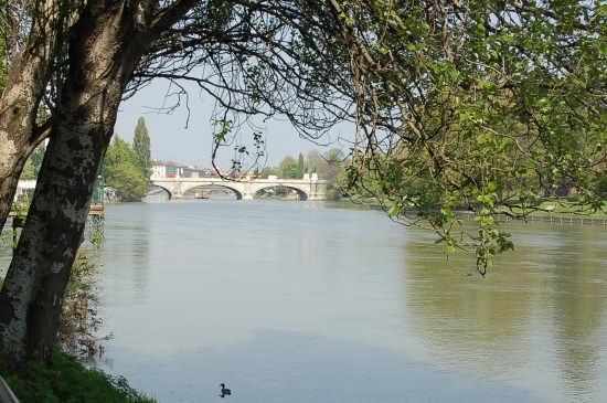 VALENTINO SUL PO - Torino (2426 clic)