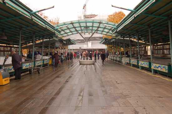 MERCATO DEL PESCE - Treviso (5167 clic)