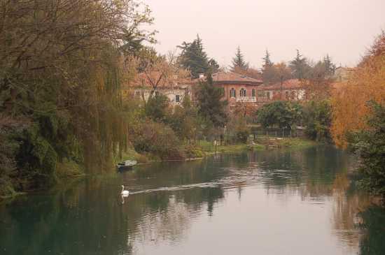 AUTUNNO LUNGO IL SILE - Treviso (4098 clic)