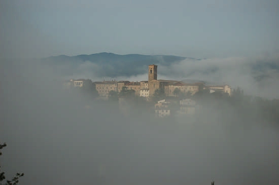 Nebbie del mattino - Poppi (3772 clic)