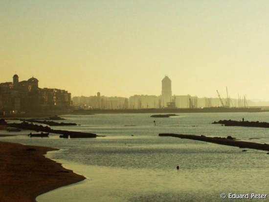 Le foto din Nettuno 42 (3105 clic)