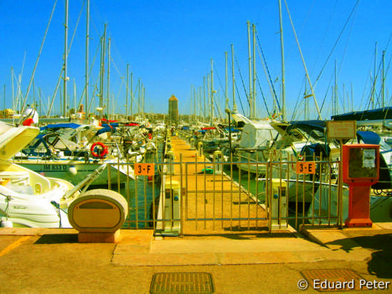 Nettuno a beautiful city 5 (2850 clic)