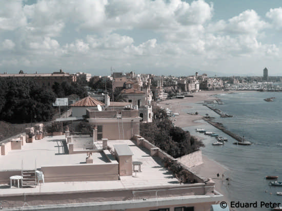 Nettuno a beautiful city (2303 clic)