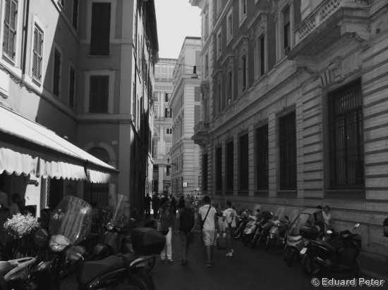 Roma Citta (1467 clic)