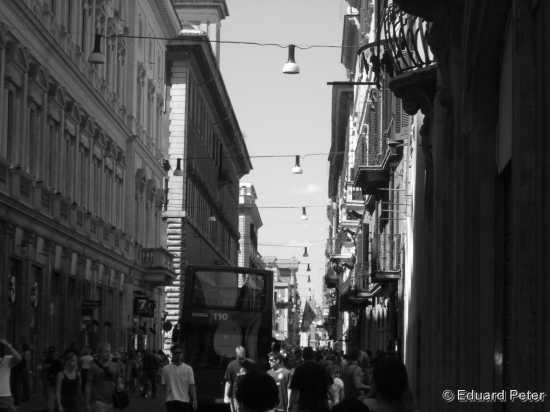Roma Citta (1651 clic)