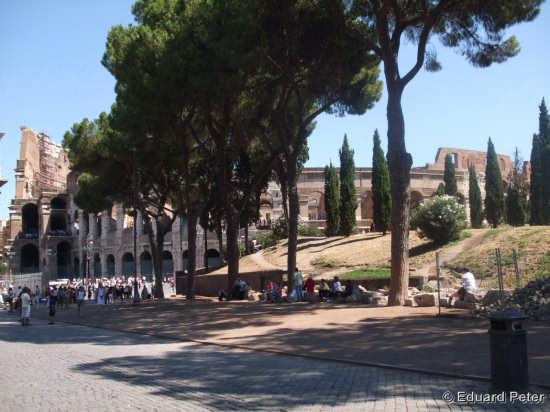 Roma Citta (2076 clic)