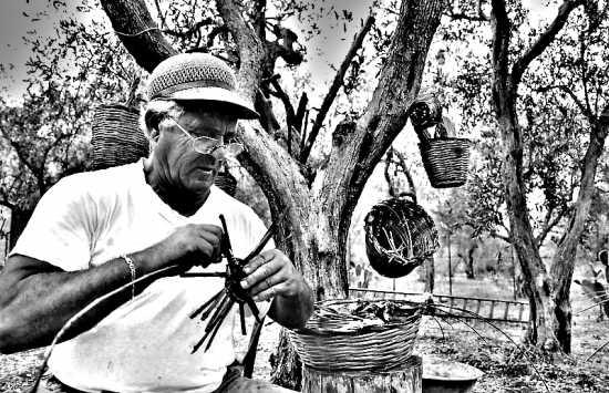 Strani intrecci  - Palermo (3580 clic)