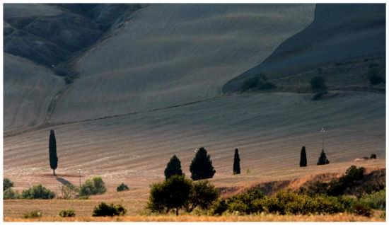Segni - Pienza (2879 clic)