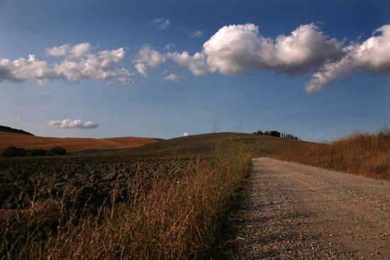 Sentiero Senese  - Pienza (2093 clic)