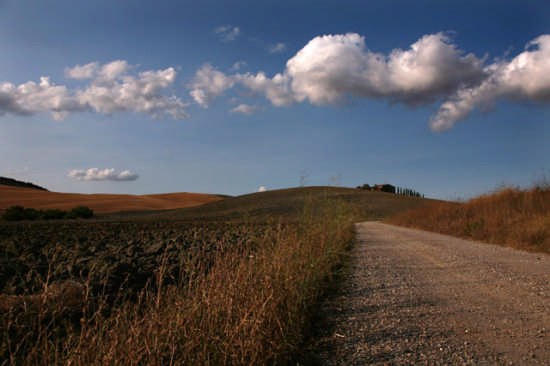 Sentiero Senese  - PIENZA - inserita il 04-Nov-08