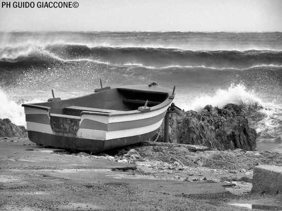 22 Novembre 2008 - Carini (4670 clic)
