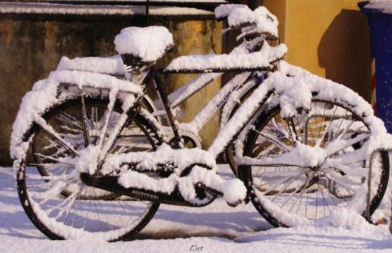 Parcheggio con sorpresa... - Parma (1937 clic)