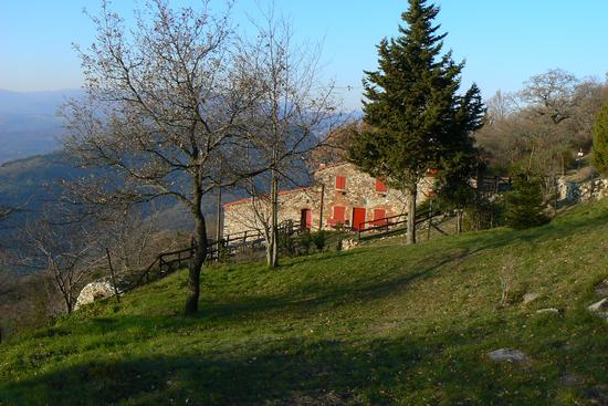 Casa Bastone - Prato (535 clic)