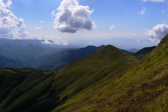 Dal monte Gennaio - Maresca (1092 clic)